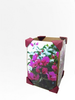Caja fotogr�fica de triedros / Trihedron Photo Box